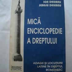 Mica enciclopedie a dreptului - I.Deleanu, S.Deleanu - Carte Teoria dreptului