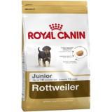 Royal Canin Rottweiler Junior 1 Kg