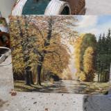 Pictura pe placaj in ulei ani 60 - Pictor roman, An: 1960, Peisaje, Realism