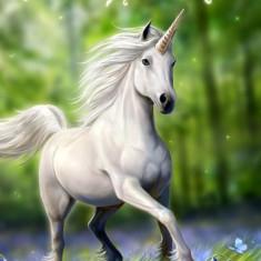 Felicitare Unicorn - Carte postala tematica