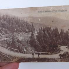 Carte postala cu imagini din valea Viseului, Maramures.Necirculata. - Carte Postala Maramures 1904-1918, Fotografie, Viseu de Sus