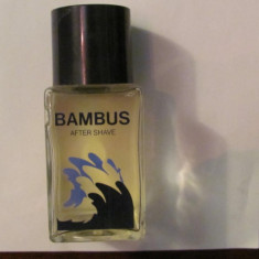 PVM - After Shave BAMBUS original vechi Germania - Sticla de parfum