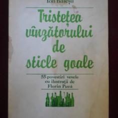 Carte de povesti - Ion Baiesu - Tristetea vinzatorului de sticle goale - 562478