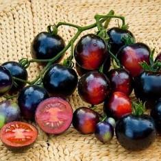 Seminte rosii - Rosii soiul ´ Blue Indigo ´´- 5 seminte pentru semanat