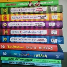 Carte educativa - Jurnalul unui puști, 5 volume