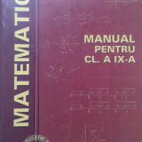 MATEMATICA. MANUAL PENTRU CLASA A IX-A - L. Panaitopol, M. Baluna - Manual Clasa a IX-a