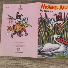 Motanel si Azorel in delta/ carte de colorat