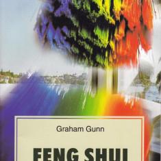 Graham Gunn - Feng Shui - 594096 - Carti Samanism