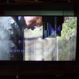 televizor samsung defect