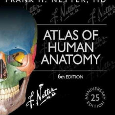 NEW Atlas of Human Anatomy by Frank H. Netter 6 ed(English) - Urgent!