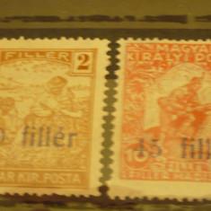 ROMANIA 1919 – EMISIUNEA TIMISOARA, timbre PORTO nestampilate B91 - Timbre Romania