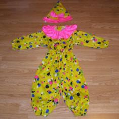 Costum carnaval serbare clovn pentru copii 2-3 ani - Costum Halloween, Marime: Masura unica, Culoare: Din imagine