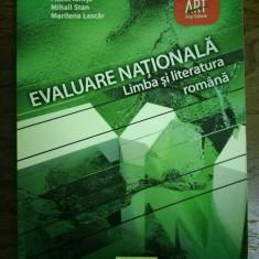 Limba romana EVALUARE NATIONALA 2013 - Editura Art Grup Editorial - Carte Teste Nationale Altele